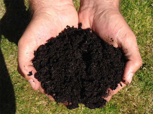 Best Ways to Prepare the Soil for Organic Gardening